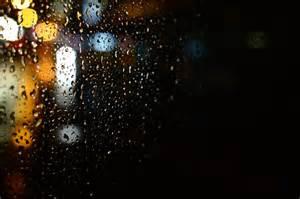 light s lights and buses grace farson