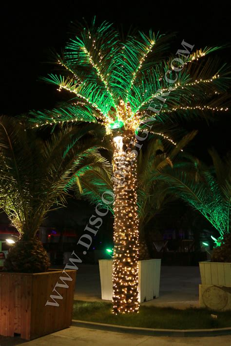 small lighted palm tree lighted palm tree on shoppinder 28 images led lighted