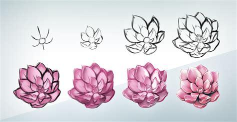 flowers step by step flower steps by kawiku on deviantart