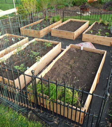 vegetable garden box diy 2 anytown usa