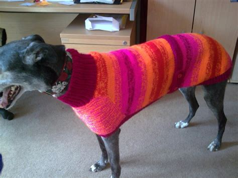 greyhound knitted hat pattern knitted greyhound coat by greyhounds4me on deviantart