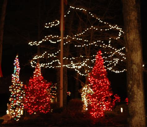 how to decorate a tree outside with lights how to decorate a tree outside with lights 28 images