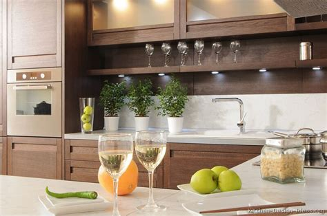 decorating ideas for kitchen countertops pictures of kitchens modern wood kitchens kitchen 4