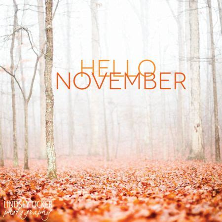 for november november freebie links the autism helper