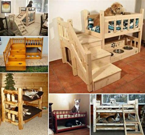 puppy bunk beds best 25 bunk beds ideas on