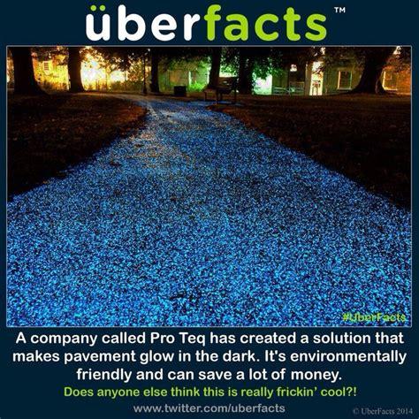 glow in the paint driveway 25 best ideas about glow stones on sidewalk