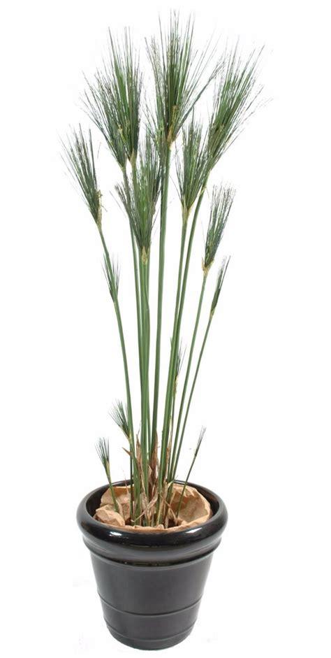 plante artificielle papyrus cyperus de nil en pot int 233 rieur h 125 cm vert