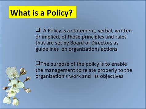 what is what is a policy