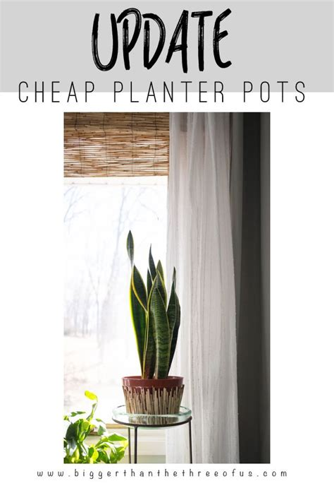 cheap planters 1000 ideas about cheap planters on planters