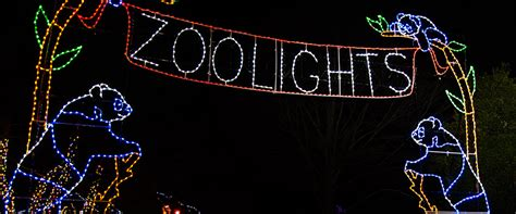washington dc zoo lights guest post national zoolights and more