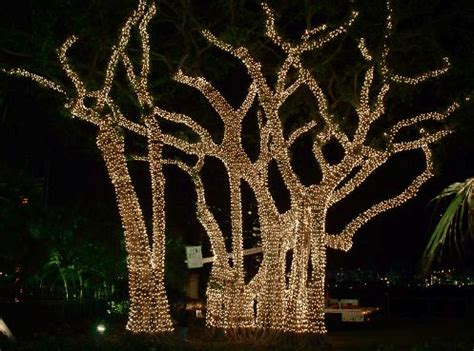 how to decorate a tree outside with lights 12 awesome outdoor decorations terrys fabrics