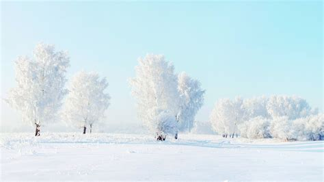 for winter winter snow pictures wallpaper wallpapersafari