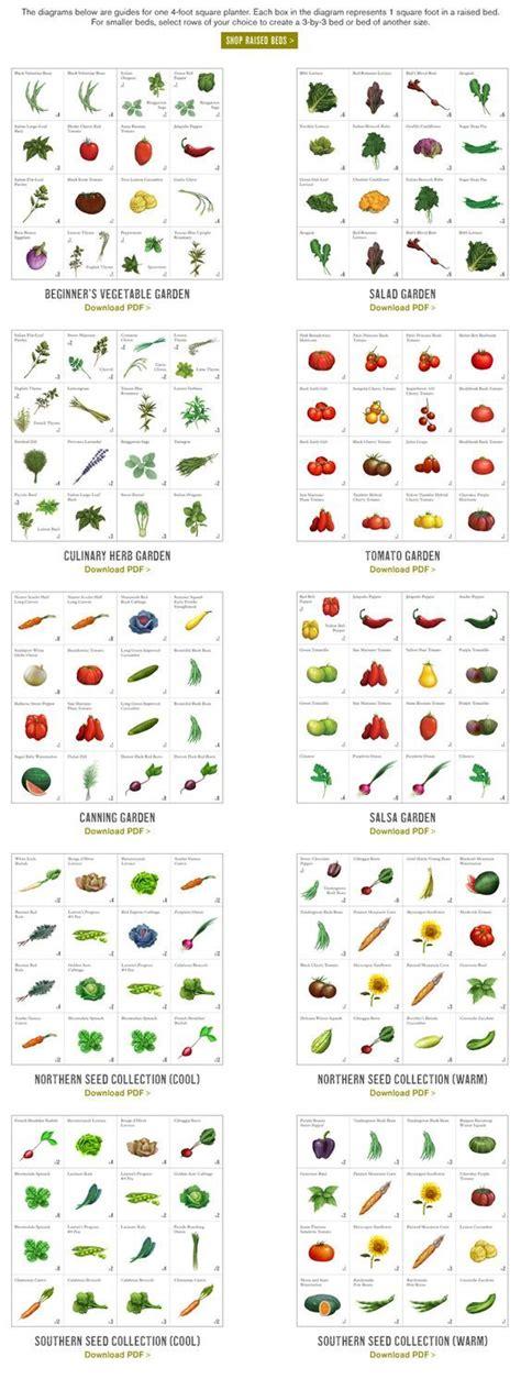salsa garden layout best 25 square foot gardening ideas on square