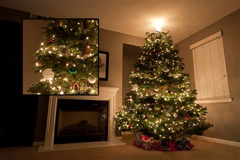 tree lights with different settings how to get your tree lights to sparkle like magic