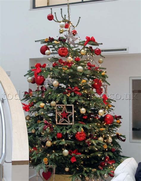 pre decorated trees delivered 28 best decorated trees delivered decorated