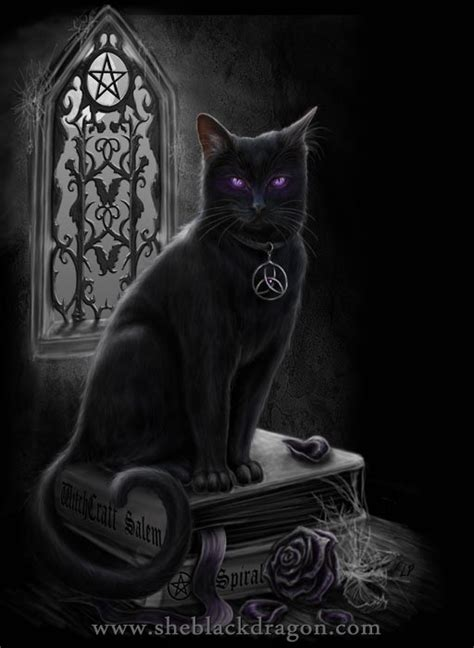 witches cat sheblackdragon