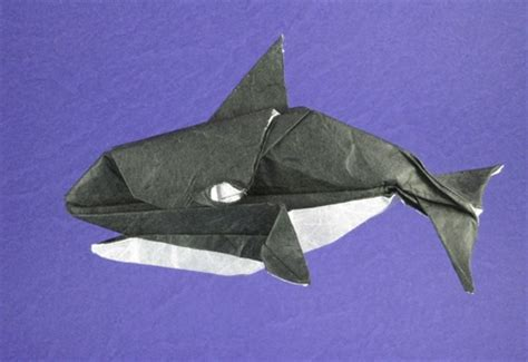 sea origami origami sea by montroll and robert j lang book