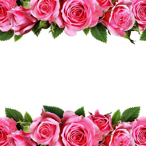 rosary from flowers flower pictures images and stock photos istock
