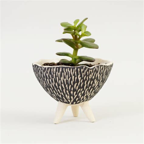 modern ceramic planter black and white pottery planter textured ceramics ceramic