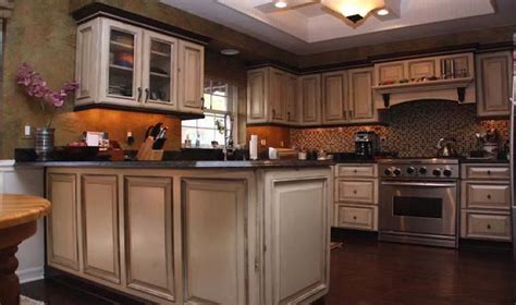 new ideas for kitchen cabinets fancy small kitchen cabinet ideas greenvirals style