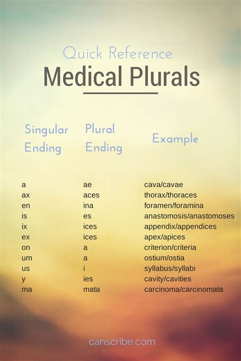 how to make terminology flash cards 25 best ideas about terminology on