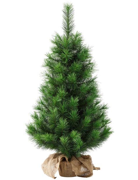 wo weihnachtsbaum kaufen weihnachtsb 228 ume dekorieren und pflegen