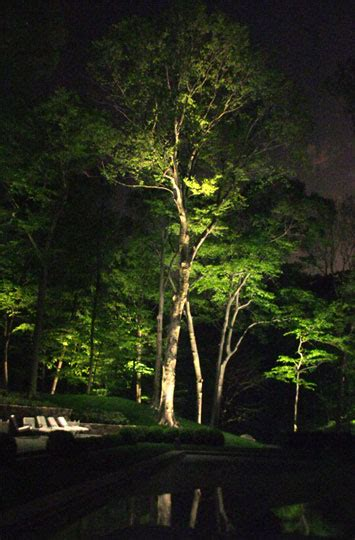 landscape lighting uplight trees artisan electric midwest indiana electrical consultants 187 landscape lights
