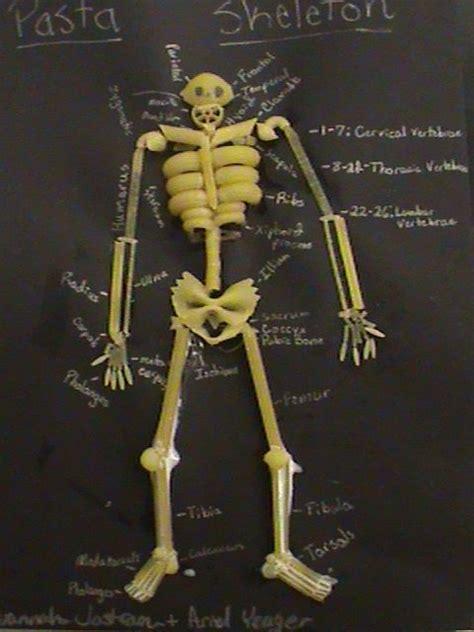 skeleton crafts for pasta skeleton science human biology