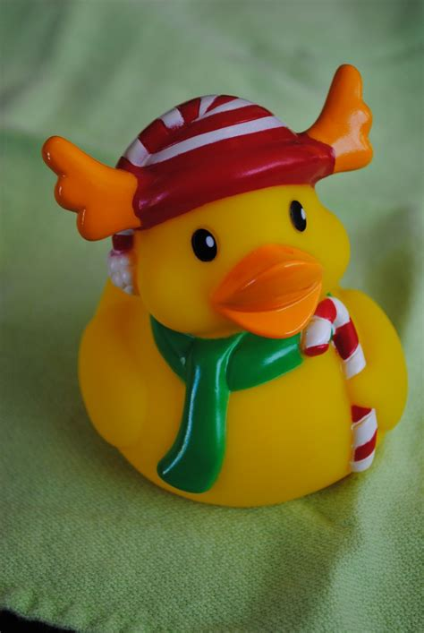 reindeer rubber st 436 best images about rubber duck on garden