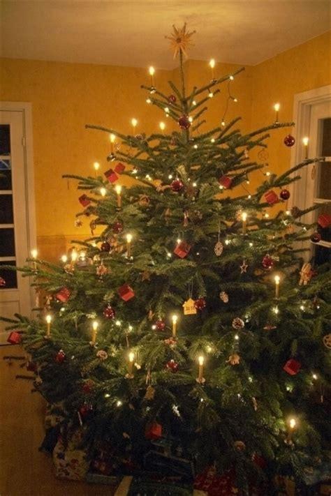 german tree decorations designcorner