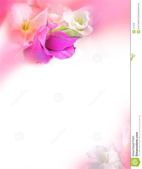 flowers for cards greeting card st valentines day flowers royalty