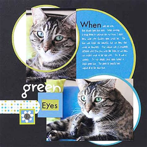 cat ideas scrapbooking