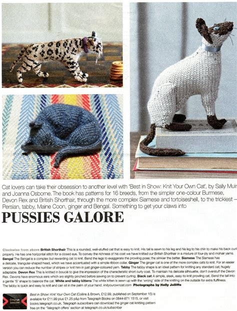 knit your own cat knitted cats
