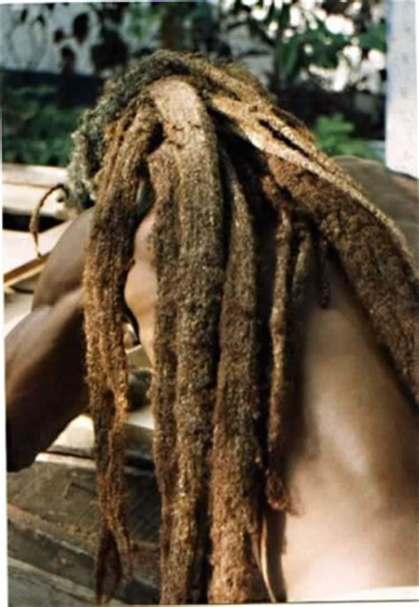 rasta for dreads 58 black dreadlocks hairstyles pictures