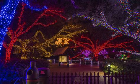 lights at the houston zoo zoo lights houston 2013 365 things to do in houston