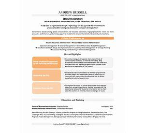executive resume executive resume samples examples - Branding Statement Resume Examples
