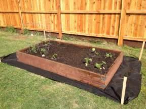 diy vegetable garden boxes simple diy vegetable garden box made using 2x12 pressure