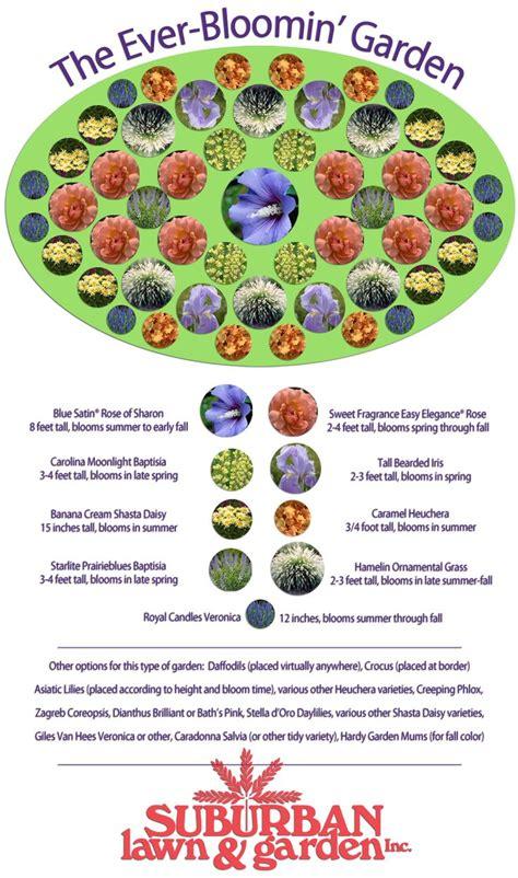 flower garden plans best 25 flower garden layouts ideas on raised