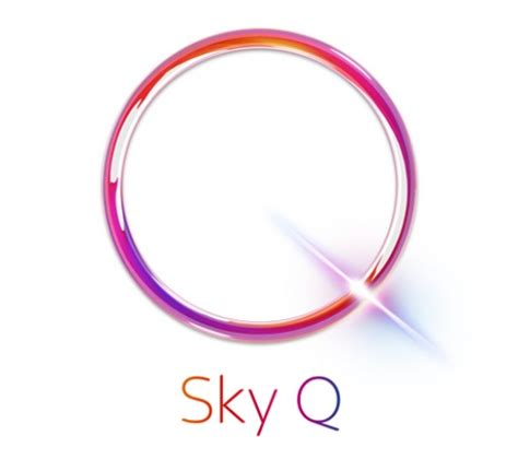 how to get netflix on sky q