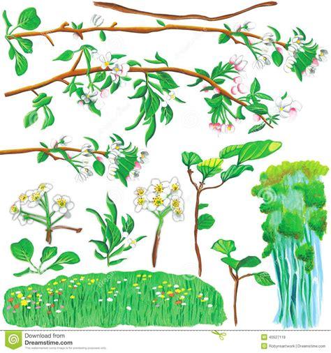 using poster paint plant paint stock illustration image of flower paint