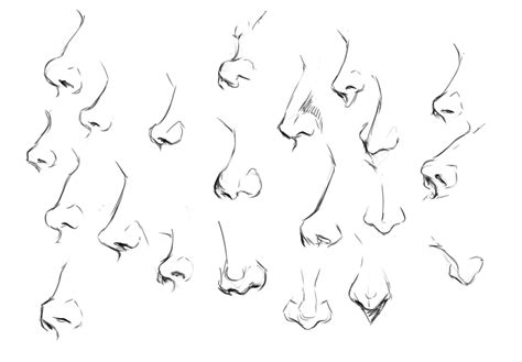 how to draw noses practice noses figures and motivation wushimoo