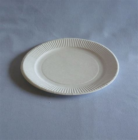 with paper plates 7 quot paper plate wb plates bowls biodegradable