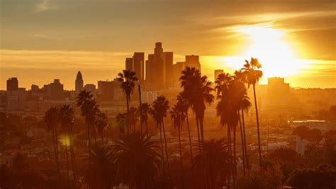live trees los angeles beautiful sunset to transition city of los