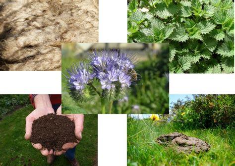Garten Pflanzen Womit Düngen by Pflanzen D 252 Ngen Mit Biologischen Hilfsmitteln Haus Und Beet