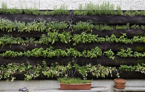 herb wall garden vertical herb garden nifty homestead