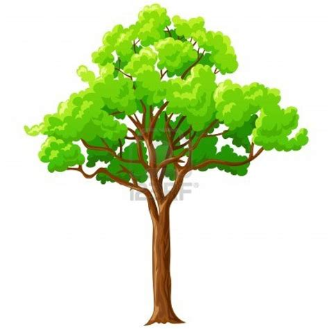 animated tree image tree background