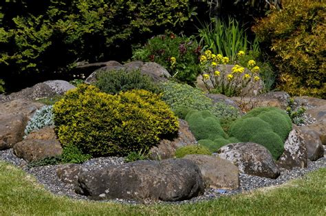 gardening with rocks gardening news and notes rock gardening news about