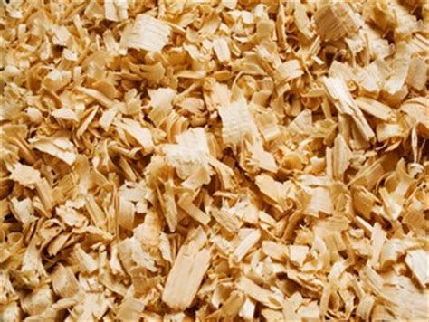 woodwork dust hazardex the dangers of wood dust