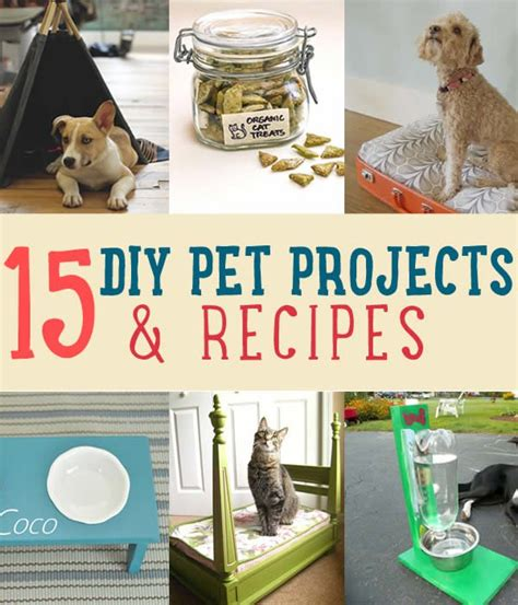 pet craft projects crafts repices
