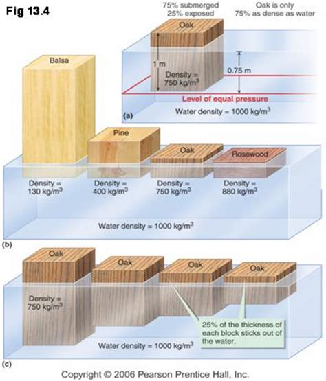 the of woodworking learnaboutwood wiki